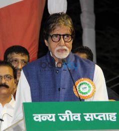 Amitabh Bachchan Appointed As Maharashtra's Tiger Ambassador