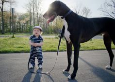 Dogs That Refuse To Grow Up!