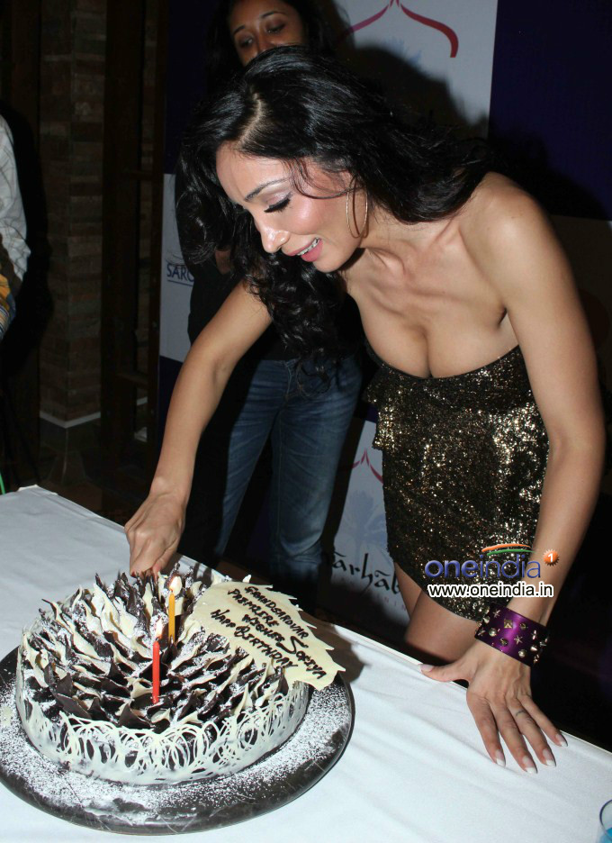 Sofia Hayat Birthday Bash 2012