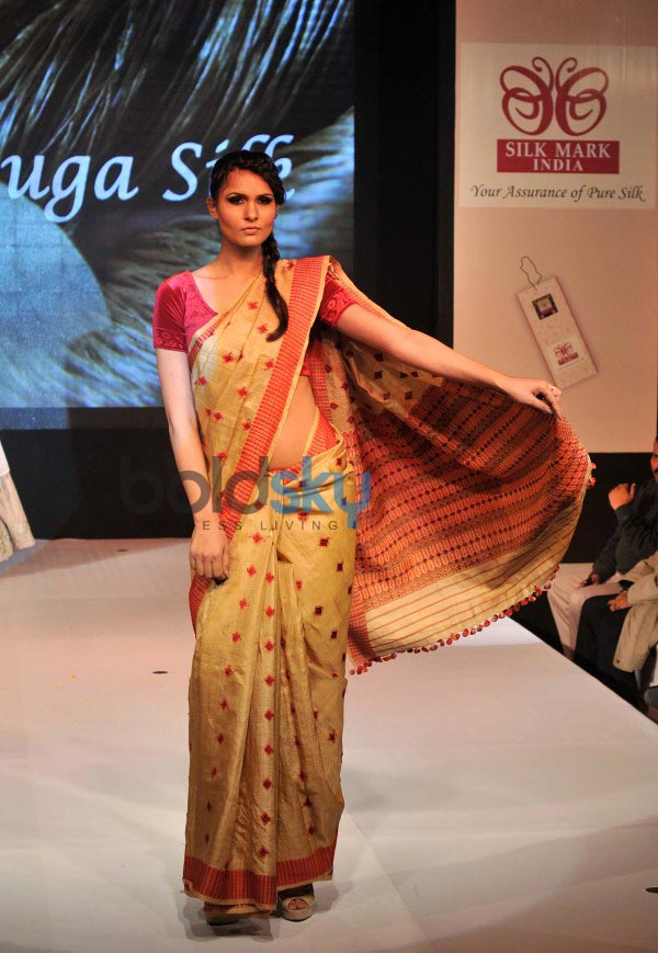 Silk Mark Vanya Silk Expo 2014 in Delhi