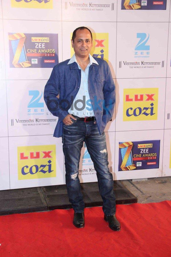 Celebs stuns at Zee Cine Awards 2014