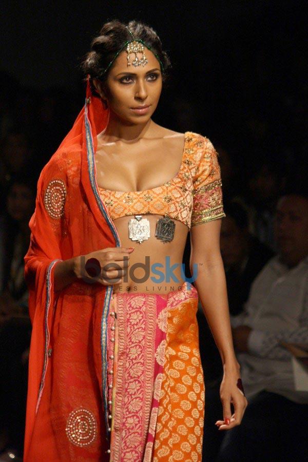 WIFW 2014 Anupamaa Dhayal show