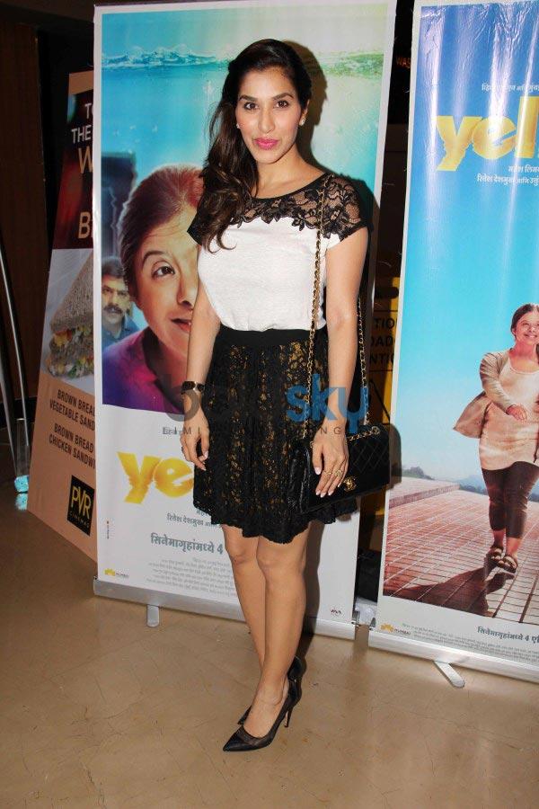 Bollywood Celebs at Yellow film screening