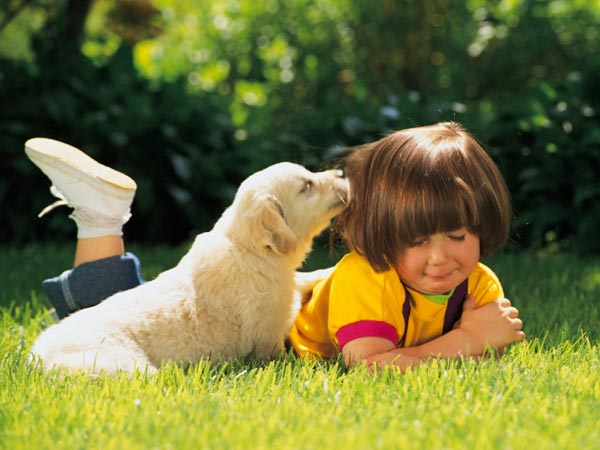 Easy Ways To Have A Clean Home With Pets