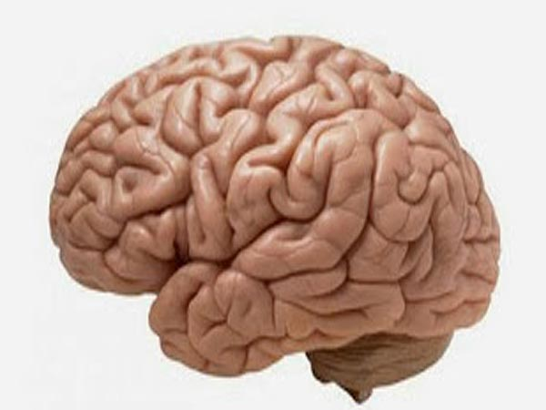 Surprising Facts About A Stroke