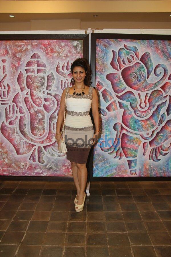 Dr.Seema Chaudhary & Nitin Chaudhary's Art Show