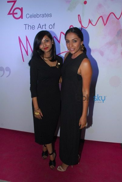 The Art Of Mrinalini Chandra Collection Preview