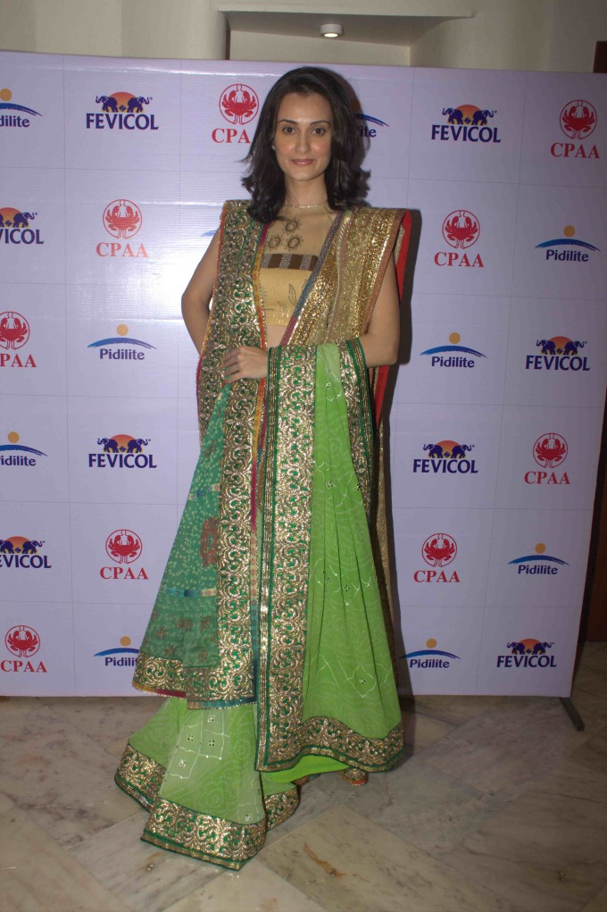 Pidilite 10th Caring With Fashion Show Preview