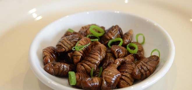 Top 10 Most Strangest Foods